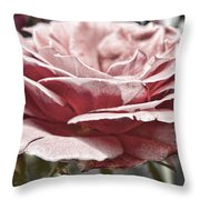 Pink Rose Faded Throw Pillow