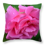 Pink Rose In Profile Throw Pillow