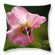 Pink Rose In The Rain 2 Throw Pillow