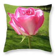 Pink Rose In The Sunlight Throw Pillow