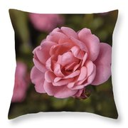 Pink Rose Instagram Throw Pillow