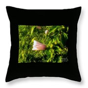 Pink Rose Of Sharon Against Trees Throw Pillow