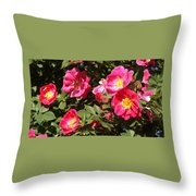 Pink Rose Of Sharon Blooms      Spring     Indiana Throw Pillow