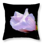 Pink Rose Of Sharon Glowing On A Black Background Throw Pillow