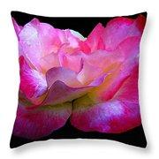 Pink Rose On Black 4 Throw Pillow