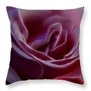 Pink Rose Portrait Throw Pillow