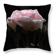 Pink Rose Silhouette 2 Throw Pillow