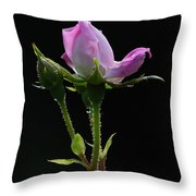 Pink Rose Silhouette Throw Pillow