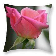 Pink Rose Squared Throw Pillow