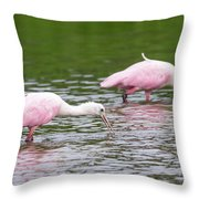 Pink Roseate Spoonbills Feeding Throw Pillow