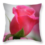 Pink Rosebud 1 Throw Pillow