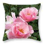 Pink Roses 1 Throw Pillow