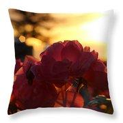 Pink Roses Sunset Throw Pillow