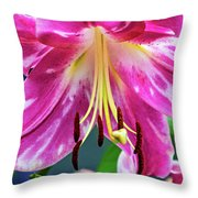 Pink Rules 2 - Paint Throw Pillow