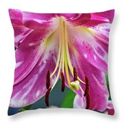 Pink Rules 2 Throw Pillow