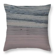 Pink Sky Reflections In The Sand Throw Pillow