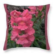 Pink Snapdragons Throw Pillow