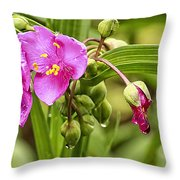 Pink Spiderwort Drip Drops Throw Pillow