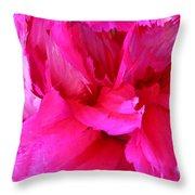 Pink Splash Throw Pillow by Kristin Elmquist