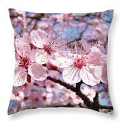 Pink Spring Blossoms Art Print Blue Sky Landscape Baslee Troutman Throw Pillow