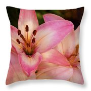 Pink Spring Lilly Throw Pillow