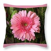 Pink Stunner Throw Pillow