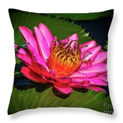 Pink Summer Water Lily Throw Pillow