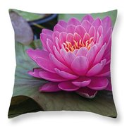 Pink Surprise Throw Pillow by Jeff Swanson