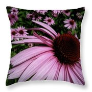 Pink Sweetie Throw Pillow