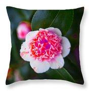 Pink Tenderness Throw Pillow