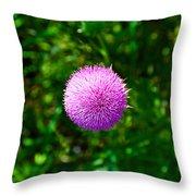 Pink Thistle Study 2 Throw Pillow