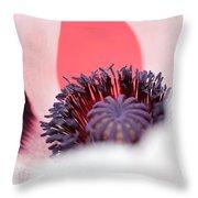 Pink Through The Poppy Throw Pillow