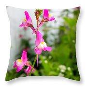 Pink Toadflax Throw Pillow