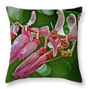 Pink Tropical Flower In Huntington Botanical Garden In San Marino-california Throw Pillow