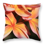 Pink Tropical Plumeria Makawao Maui Hawaii Throw Pillow