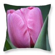 Pink Tulip Beauty Throw Pillow