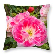 Pink Tulip, Keukenhof Throw Pillow