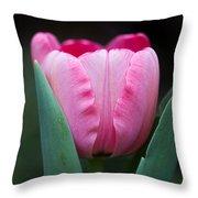 Pink Tulip Panoramic Throw Pillow