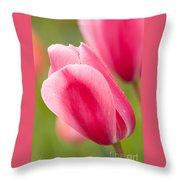 Pink Tulips 3 Throw Pillow