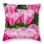 Pink Tulips Aglow Throw Pillow