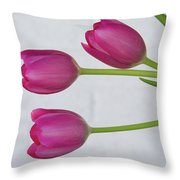 Pink Tulips And White Brick Wall Throw Pillow