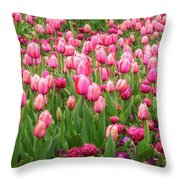 Pink Tulips At Floriade In Canberra, Australia Throw Pillow