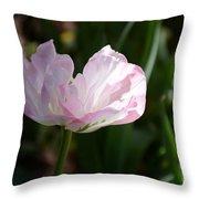 Sun Kissed Flower Throw Pillow