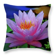 Pink Water Lily 007 Throw Pillow