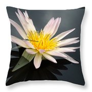 Pink Water Lily With Dragonfly Throw Pillow
