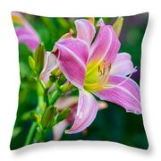 Pink White And Yellow Day Lily Throw Pillow