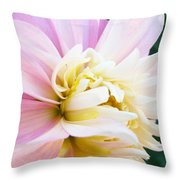 Pink White Dahlia Flower Soft Pastels Art Print Canvas Baslee Troutman Throw Pillow