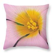 Pink Wilk Flower Throw Pillow