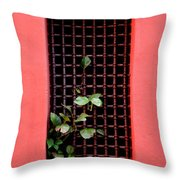 Pink Window In Cartegena Throw Pillow