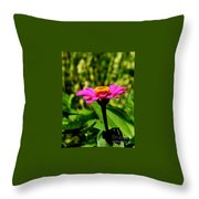 Pink Zennia Throw Pillow